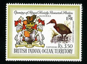 British Indian Ocean Territory Stamps # 43 XF OG NH Catalog Value $16.50