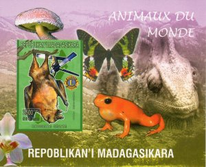 Madagascar 1999 Sc#1416g BAT (Rousette geante) Butterfly S/S IMPERFORATED MNH