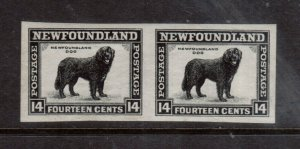 Newfoundland #261a Extra Fine Never Hinged Imperf Pair **With Certificate**
