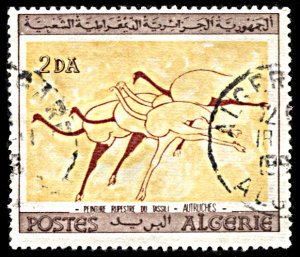 Algeria 346, used, Wall Paintings, Ostriches