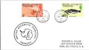 British Antarctic Territory, Polar, Fish, Marine Life