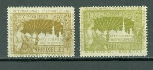 BRUSSELS, BRUXELLES EXPO 1897 2 NICE  LABELS, VIGNETTES MNH