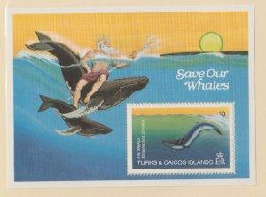 Turks & Caicos Scott #572 Stamps - Mint NH Souvenir Sheet