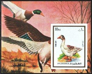 Fujairah. 1972. bl131B. Goose, birds, fauna. MNH.