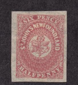 Newfoundland Scott # 21 XF-OG mint previously hinged nice color! see pic !