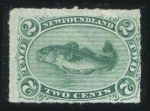 NEWFOUNDLAND CodFish Scott 38 Rouletted 1879  Mint/Unused No Gum CV $200.00