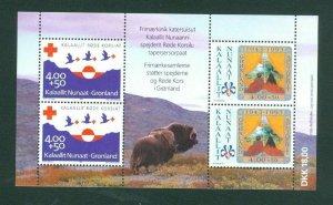 Greenland.  Souvenir Sheet 1993 Mnh. Red Cross. Scout Movement. Semi-Postal