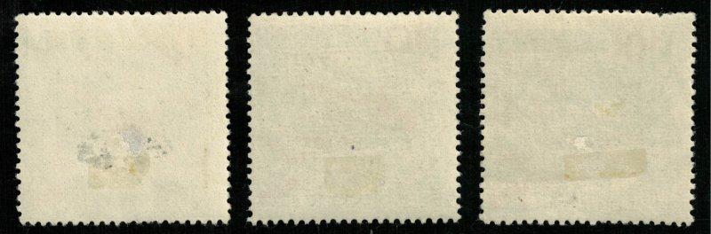 Sport, SU, (3166-Т)