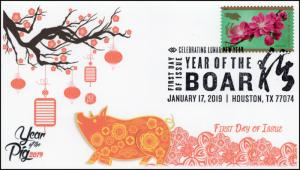 19-028, 2019, Year of the Boar, Pictorial  Postmark, FDC, Lunar New Year