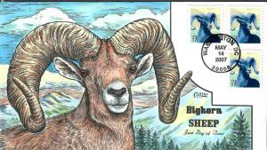 US Collins FDC SC#4138 Bighorn Sheep