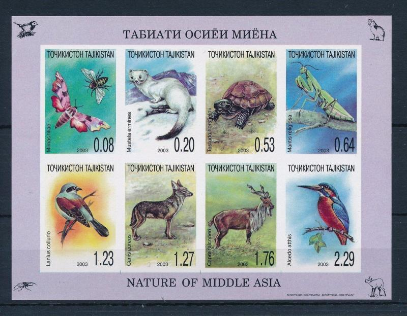 [34760] Tajikistan 2003 Animals fauna Turtle Birds Imperforated MNH Sheet