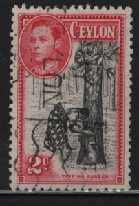 CEYLON, 278, USED, 1938-52, Tapping rubber tree