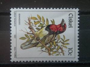 CISKEI, 1981, MNH 10c, Scott 14, Birds