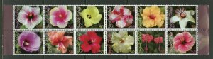 NORFOLK ISLAND HIBISCUS  SET OF TEN   MINT NH