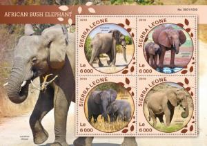 Sierra Leone MNH S/S African Bush Elephants 2016 4 Stamps