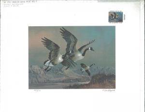 ARIZONA #4 1990 DUCK STAMP PRINT CANADIAN GEESE MEDALLION EDITION  Only 100 made