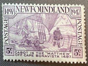 Newfoundland # 270 MNH