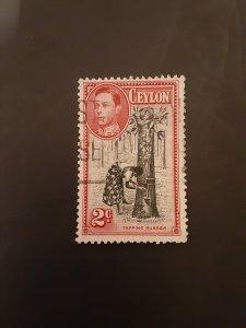 *Ceylon #278b