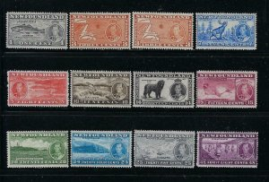 NEWFOUNDLAND SCOTT #233-243 (BOTH DIES OF THE 3D)  - MINT NEVER HINGED/LH