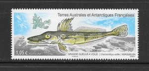 FISH - SOUTHERN ANTARCTIC TERITORY NEW 2020 ISSUE  MNH