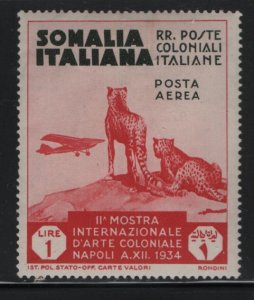 SOMALIA, C5, HINGED, 1934, CHEETAHS