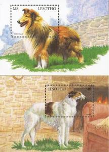 Lesotho - 1999 Dogs - Set of 2 Souvenir Sheets - Scott #1175-6
