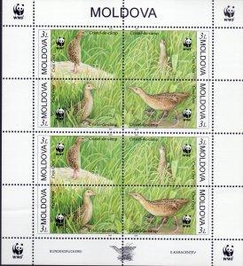 Moldova. 2001. Small sheet 379-82. Fauna bird. MNH.
