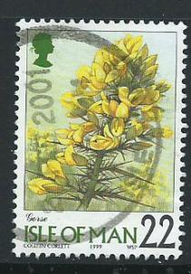Isle of Man  SG 780 VFU imprint 1999