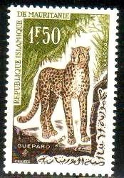 Wildcat, Cheetah, Mauritania stamp SC#136 MNH