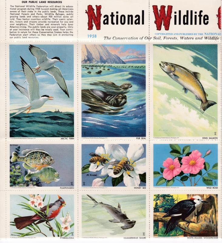 U.S. National Wildlife Federation Sheet of 36 Colorful Wildlife Card Labels VF