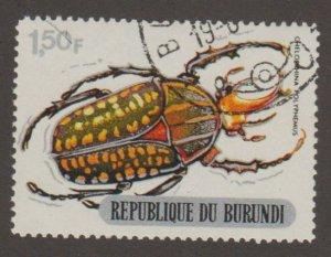 308 Beetle