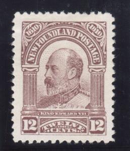 Newfoundland #96 Extra Fine Mint Original Gum Hinged
