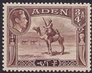 Aden 1939 - 48 KGV1 3/4 Annas Red Brown MM SG 17 ( 954 )