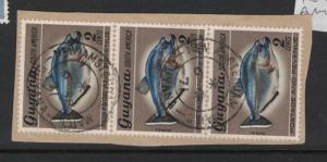 Guyana Fish x 3, New Amsterdam Town Cancel VFU (5dua)