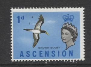 ASCENSION- Scott 75 - Bird - Brown Booby -1963 - MNH - Single 1d Stamp