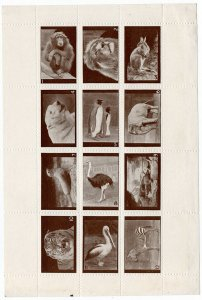(I.B) Cinderella Collection : Zoological Society of Scotland (complete sheet)