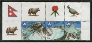 Nepal 1982 Mt. Everest, Lhotse, Nuptse Himalayan Peak Mountain Geology Sc 404...