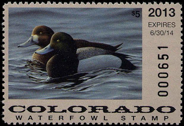 COLORADO #24 2013 STATE DUCK  STAMP GREATER SCAUP by Charles Black
