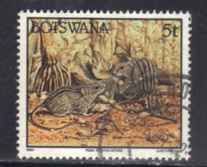 BOTSWANA SC# 521 **USED**  5t 1992  STRIPED MOUSE  SEE SCAN