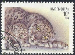 Snow Leopard, Panthera Uncia, Kyrgyzstan SC#29 used