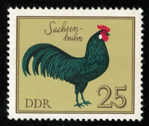 Birds 1979 MNH ** DDR 25 Pfg. SC #1985 (T-3335-4)