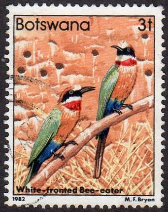 Botswana 305 - Used - 3t White-fronted Bee-eater (1982) (cv $ 2.30) (2)