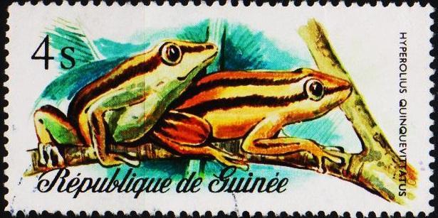 Guinea. 1977 4s  S.G.938 Fine Used