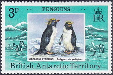British Antarctic Territory # 72 mnh ~ 3p Macaroni Penguins