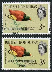 British Honduras SG218 3c with Self Government 1964 Overprint MISPLACED U/M