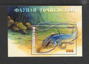 FISH - TAJIKISTAN #159 MNH