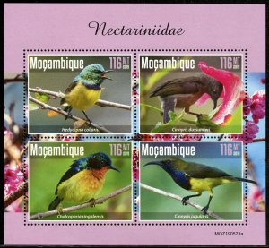 MOZAMBIQUE 2019 HUMMINGBIRDS  SHEET MINT NEVER HINGED