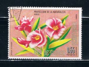 Equatorial Guinea Used Flower Nerium Oleander (E0035)+