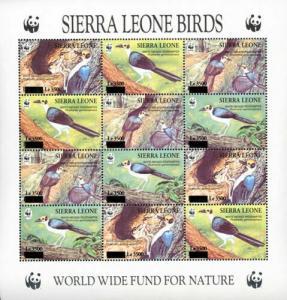 Sierra leone 1994 birds wwf klb of 12v overprint MNH