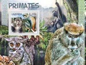 Uganda - African Primates - Blue monkey, Common chimpanzee - 21D-014